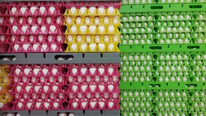 Halmstads Västkustägg äggförpackningar