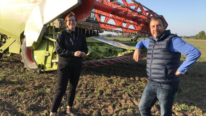 Marie-Louise Nydahl och Klaus Rinnegård vid tröskningen av åkerbönor
