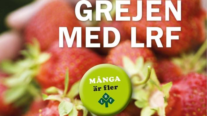 Medlemsbroschyr - Grejen med LRF (webbild)