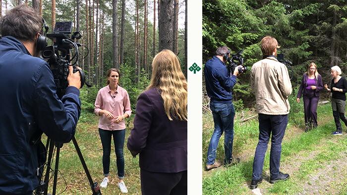 France 24, som sänder programmet Talking Europe till 310 hushåll i 120 länder, gjorde inslag om det unika svenska familjeskogsbruket som är bra både för miljön och ekonomin. Emma Berglund, LRF Skogsäagarna och ordf för Spillkråkorna intervjuades