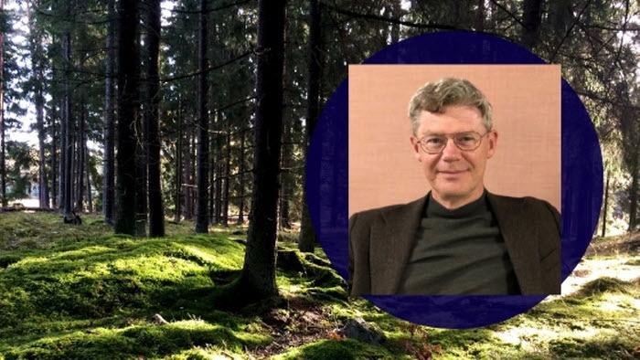 samordnare småländska skogsstrategin