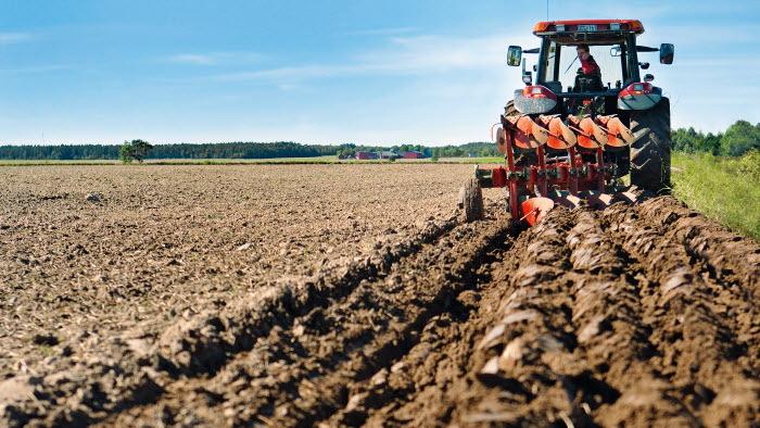 Bild bakifrån när traktor plöjer åker. Graute gård, Gotland.