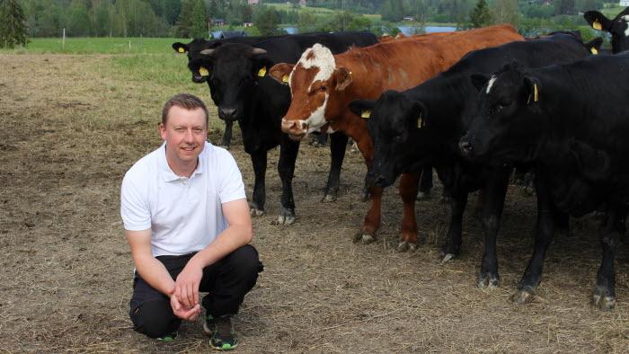 Årets nötköttsföretag 2019