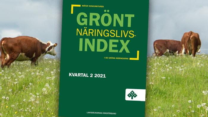 Grönt näringslivsindex Q2 2021