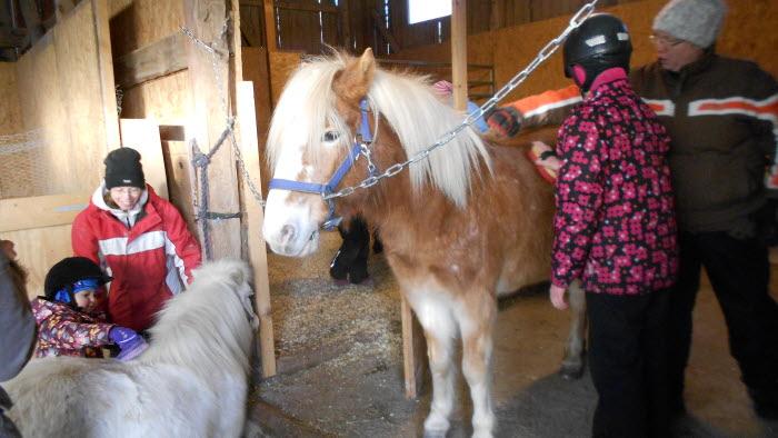 Besöksgård för barn med djur i By Kyrkby, Avesta