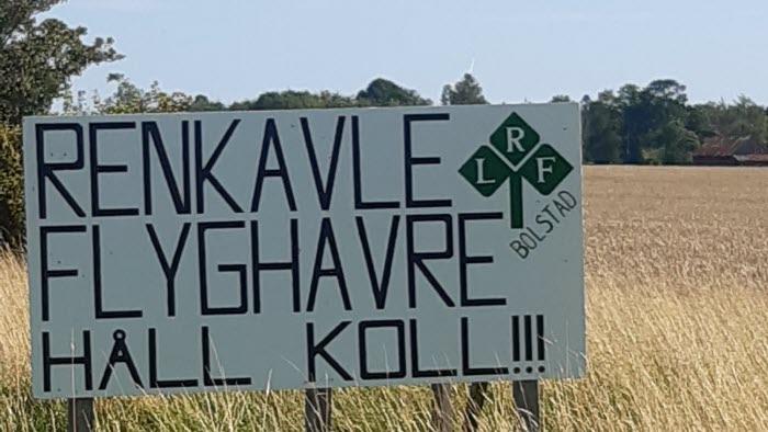 Skylt Renkavle flyghavre - Håll koll!