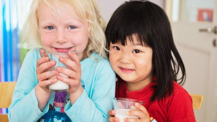 Femåringar dricker mjölk