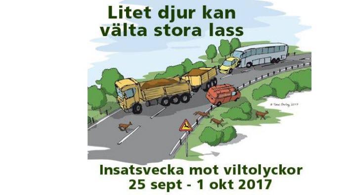 Insatsvecka mot viltolyckor 2017