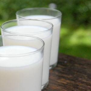 Tre mjölkglas i det gröna