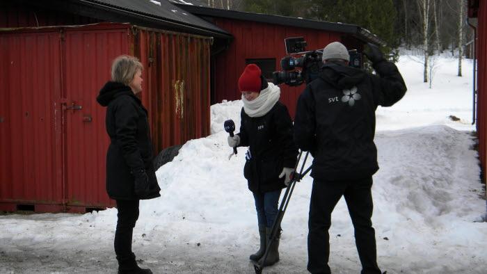 ulla andersson intervjuas av SVT Gävle-Dala