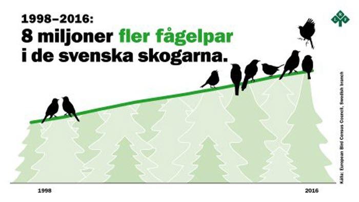 Grafik Biologisk mångfald skog