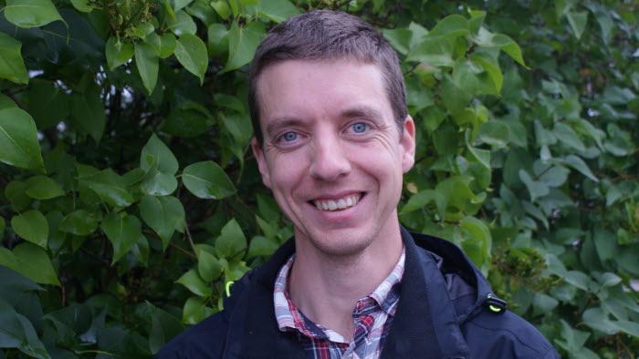 Anton Holmström, Skogsstyrelsen