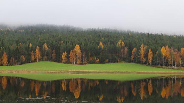 Landskap Skataudden