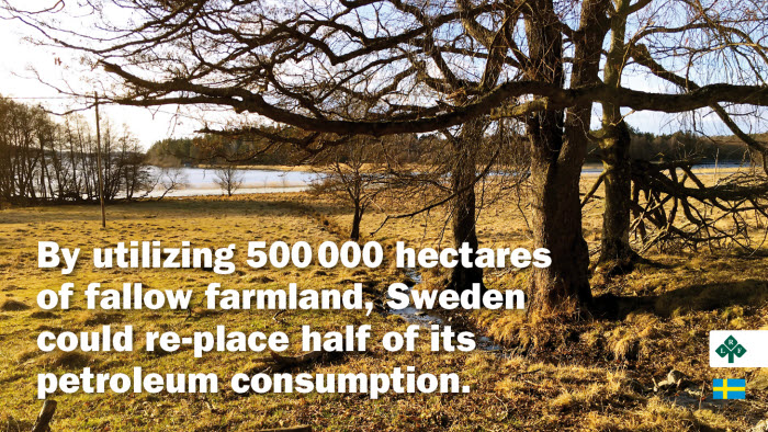 Bild med budskap om bioenergi