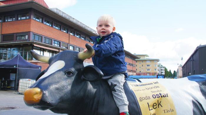 pojke sitter på ko i plast på marknad
