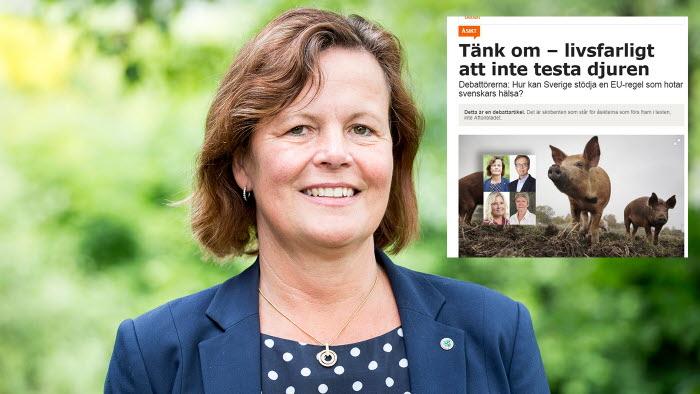 Åsa Odell i debattinlägg om regeringens märkliga inställning i PRRS-frågan