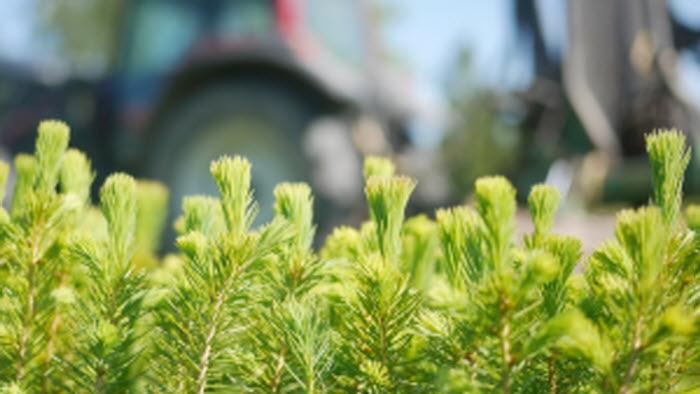 Plant och traktor
