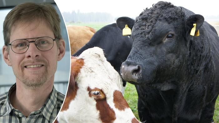 LRF vann prinicpmål om djurhantering på gård. LRFs Anders Drottja som jobbar med omsorgsfrågor, kommenterar domen.