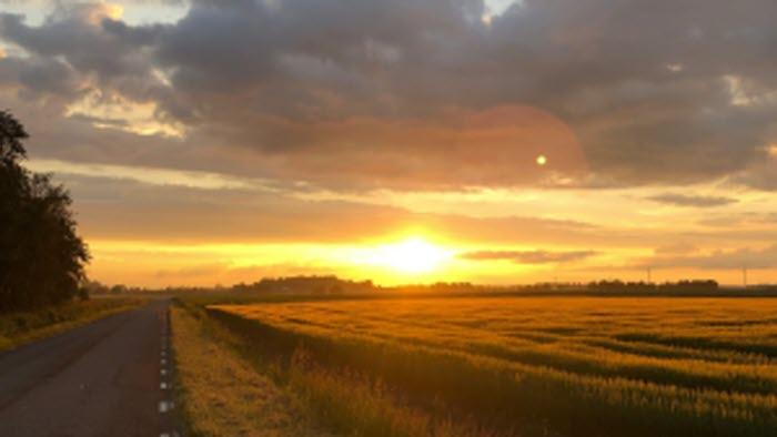 Solnedgång över Östgötaslätten, Vadstena