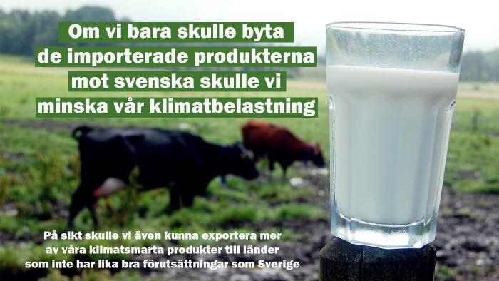 5 snabba frågor om animalieproduktion i samband med Eat Lancets rapport