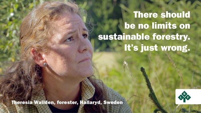 Theresia Wallden, skogsägare, negativ till EU-förslaget om avverkningstak