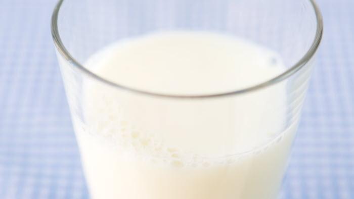 Mjölkglas på rutig duk