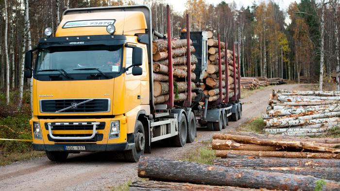 Lastbil hämtar virke efter avverkning
