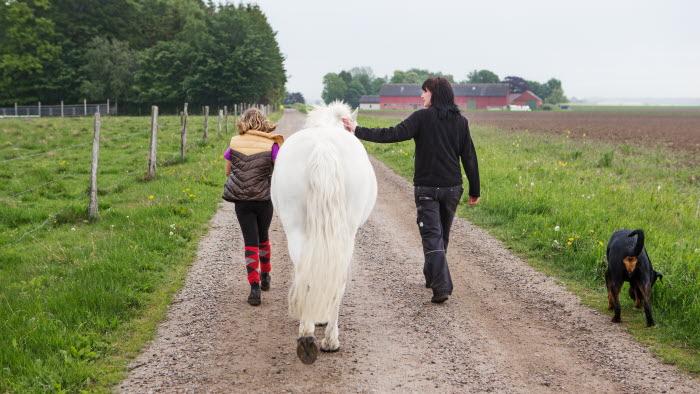På väg, mot Hörby gård. Foto: Ester Sorri