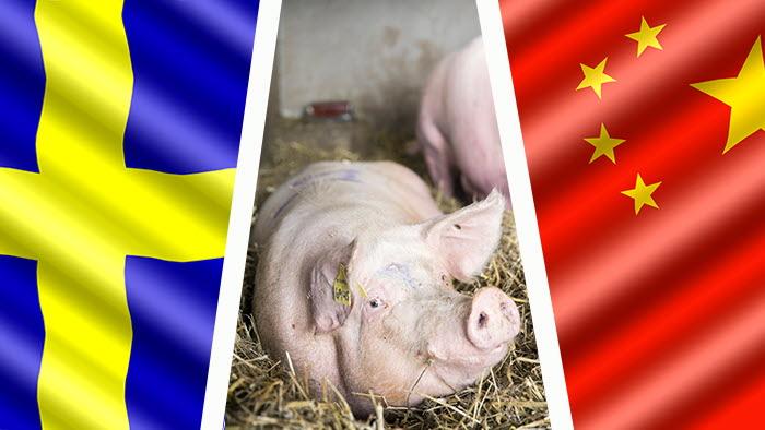 Handelsavtalet med Kina har blivit stoppat på grund av Kinas handelskrig med USA.