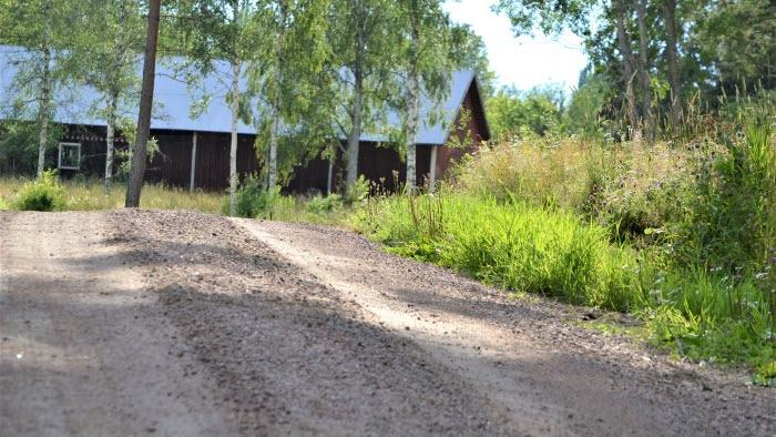 Grusväg med ladugård i bakgrunden