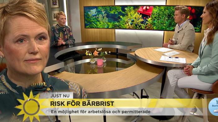 Anna Karin Hatt i TV4 Nyhetsmorgon om risken för bärbrist.