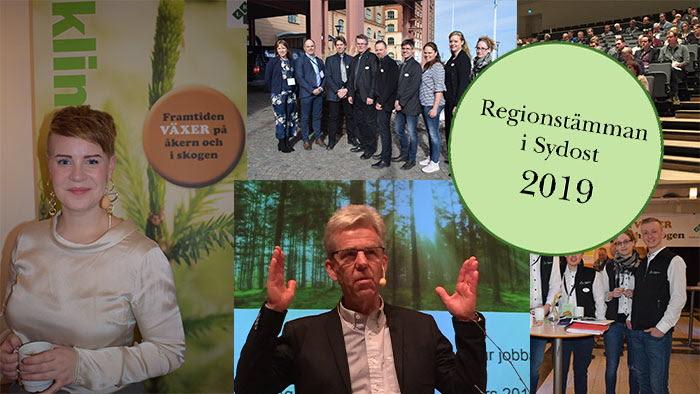 Collage Sydost stämma 2018