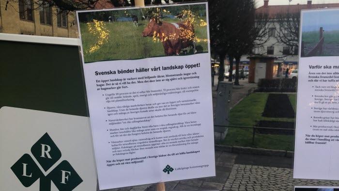 Lidköping vecka 47