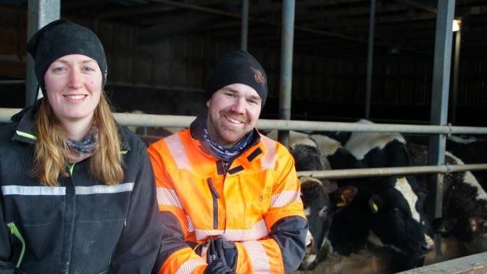 Årets nötköttsföretag i Norrbotten 2019