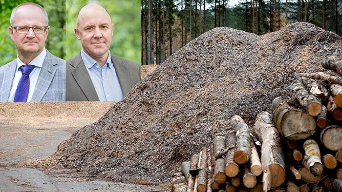 nationella skogsprogrammet