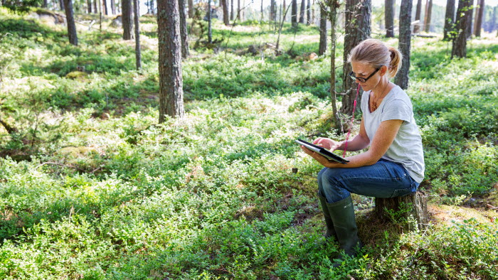 Framtida skogsägare med ipad i skogen