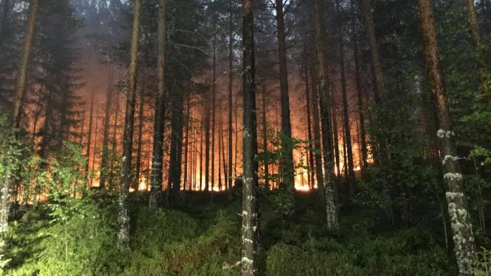 Branden i Ljusdal