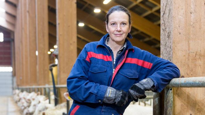 Lena Åsheim, Köttdelegationen, LRF Kött