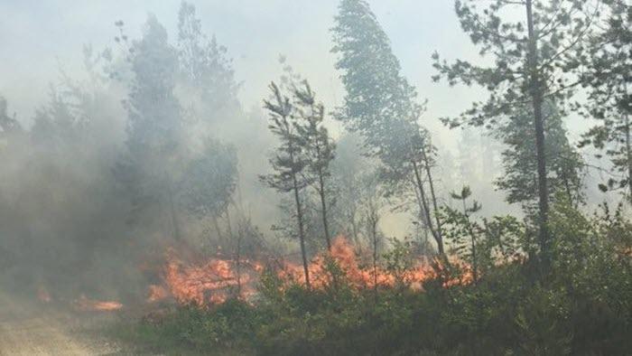 Bönderna hjälper till vid skogsbrand