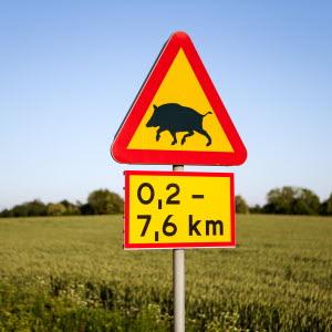 Varning för vildsvin, Hörby gård. Foto: Ester Sorri