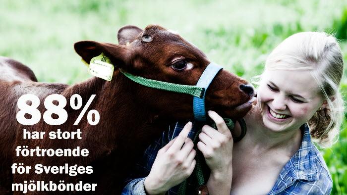 Mjölkbonde förtroende enligt Novus juni 2020