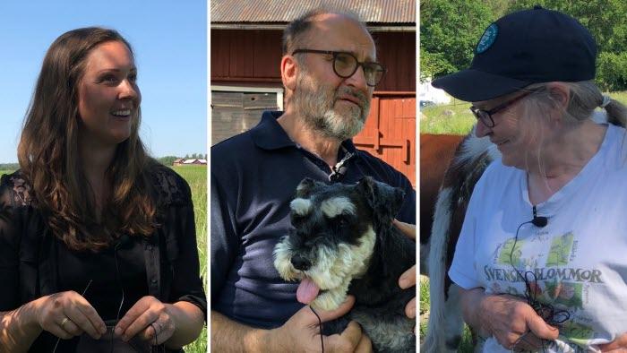 Mälardalens hållbarhetsambassadörer Cassandra Bjelkelöv, Gunnar Brostedt, Karin Broström