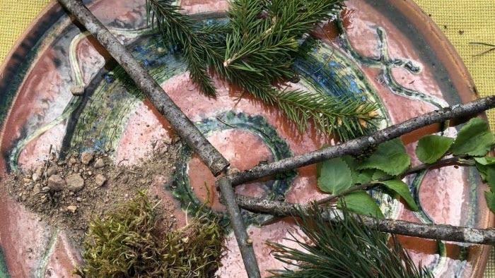 Tallriksmodellen a´la skogsägare