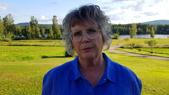 Regionchef Mittnorrland, Gabriella Persson Turdell