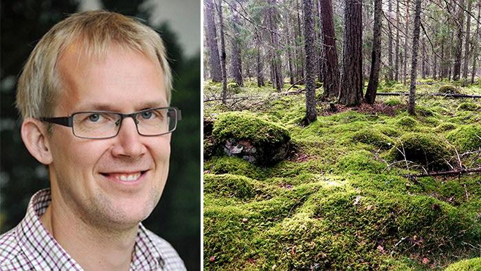 webbinarie om artskydd och nyckelbiotoper med Gunnar Lindén