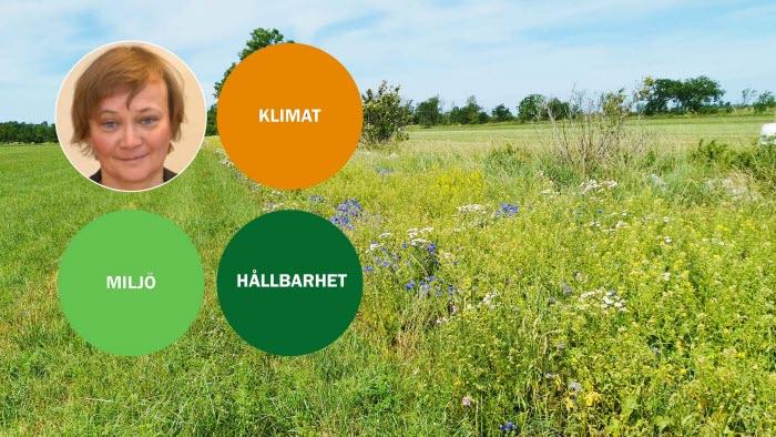 Nyhetsbild Helena Elmquist
