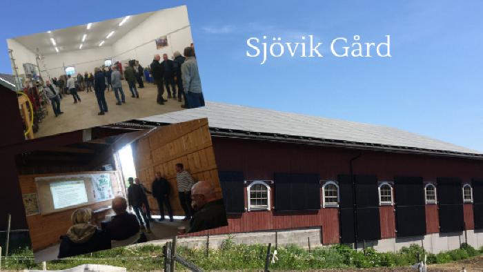Solsafari på Sjöviks gård