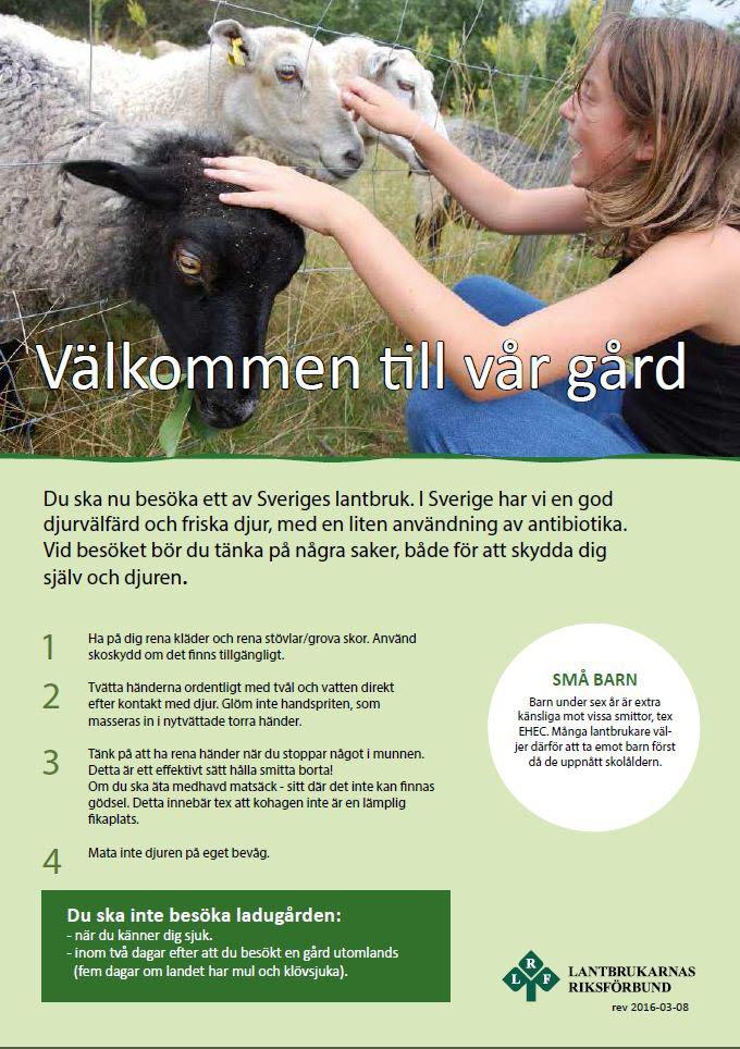 PDF för besökare