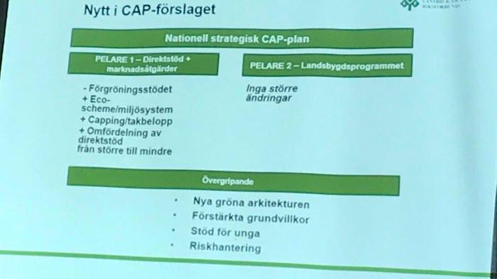 Föredrag Ingrid Rydberg