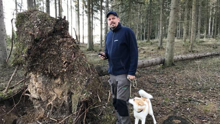 Andreas Johansson markerar en vindfälla på skogs-appen.